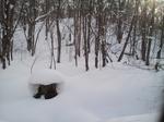 image/2012-01-21T19:03:57-1.jpg